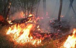 Nesavjesnim paljenjem korova ugrozili kuće