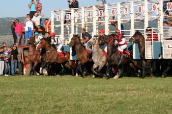 Nevesinjska olimpijada 2021: konjske trke – prijave, nagradni fond i propozicije