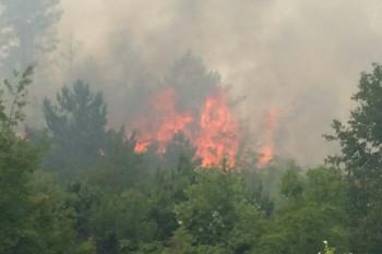 Požar iz Nudola se širi prema Aranđelovu