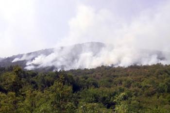 И даље активан пожар у рејону Зубаца
