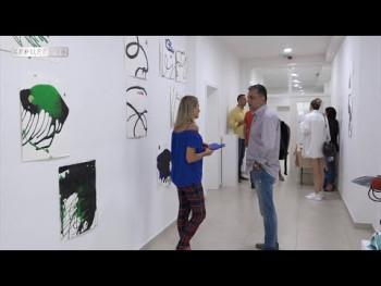 Otvorena izložba ''Instaliranje spokoja'' Radoslava Tadića(Video)