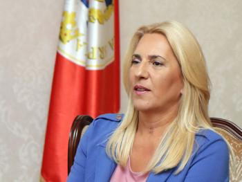 Cvijanović: NSRS najpozvanije mjesto gdje se štite nadležnosti Srpske