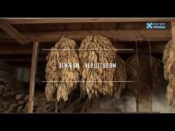 Zemljom Hercegovom: Donje Čarađe (VIDEO)