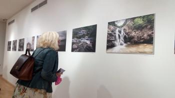 Otvorena izložba  ''Bliski sureti''