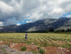 Trebinje: Poljoprivreda i turizam-vodeće oblasti za pokretanje biznisa
