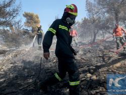 Грчка: У протекла 24 часа регистрована 62 пожара