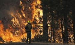Ситуација катастрофална, љубињски ватрогасци моле за помоћ