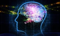 Kако чување тајне утиче на мозак?
